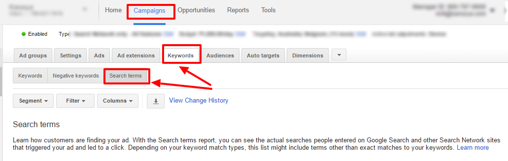 campaign search terms adwords